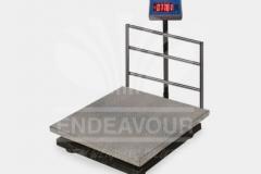 platform_scale3